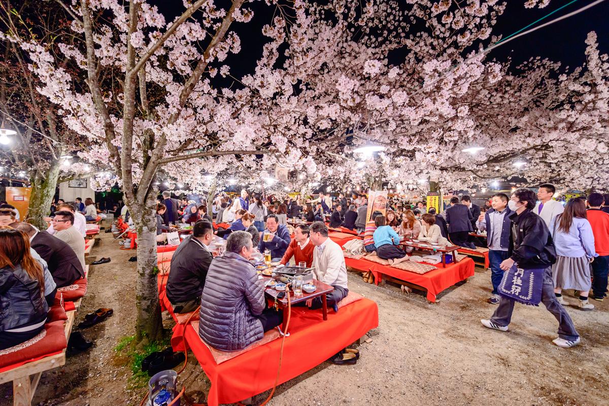京都のお花見スポット10選♪桜の季節に出掛けよう!