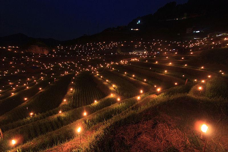 日本の伝統行事「虫送り」とは?虫送りが開催される各名所をご紹介