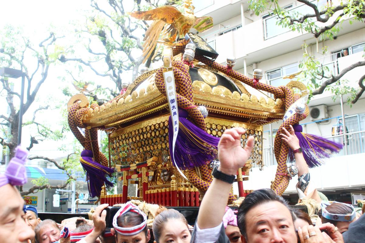 東向島白鬚神社ほんまつり!3年に1度の本社神輿が下町を巡る!