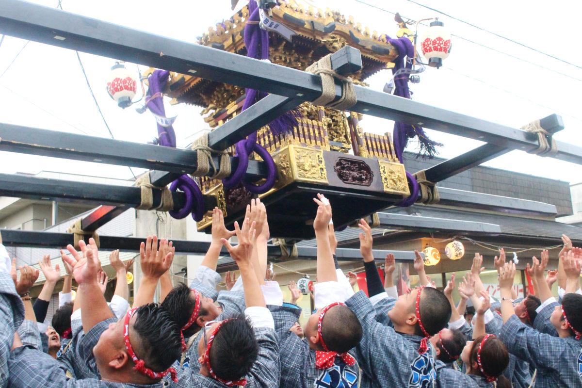 吉川八坂祭りではお神輿が暴れる!?空を舞い、うねり進むお神輿は必見!!