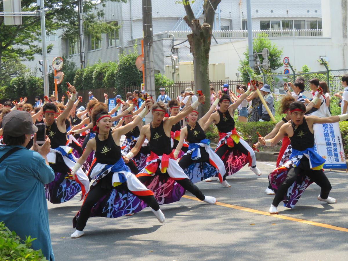朝霞市民まつり「彩夏祭」のメインイベント「関八州よさこいフェスタ」で市内のいたるところに響き渡る鳴子の音