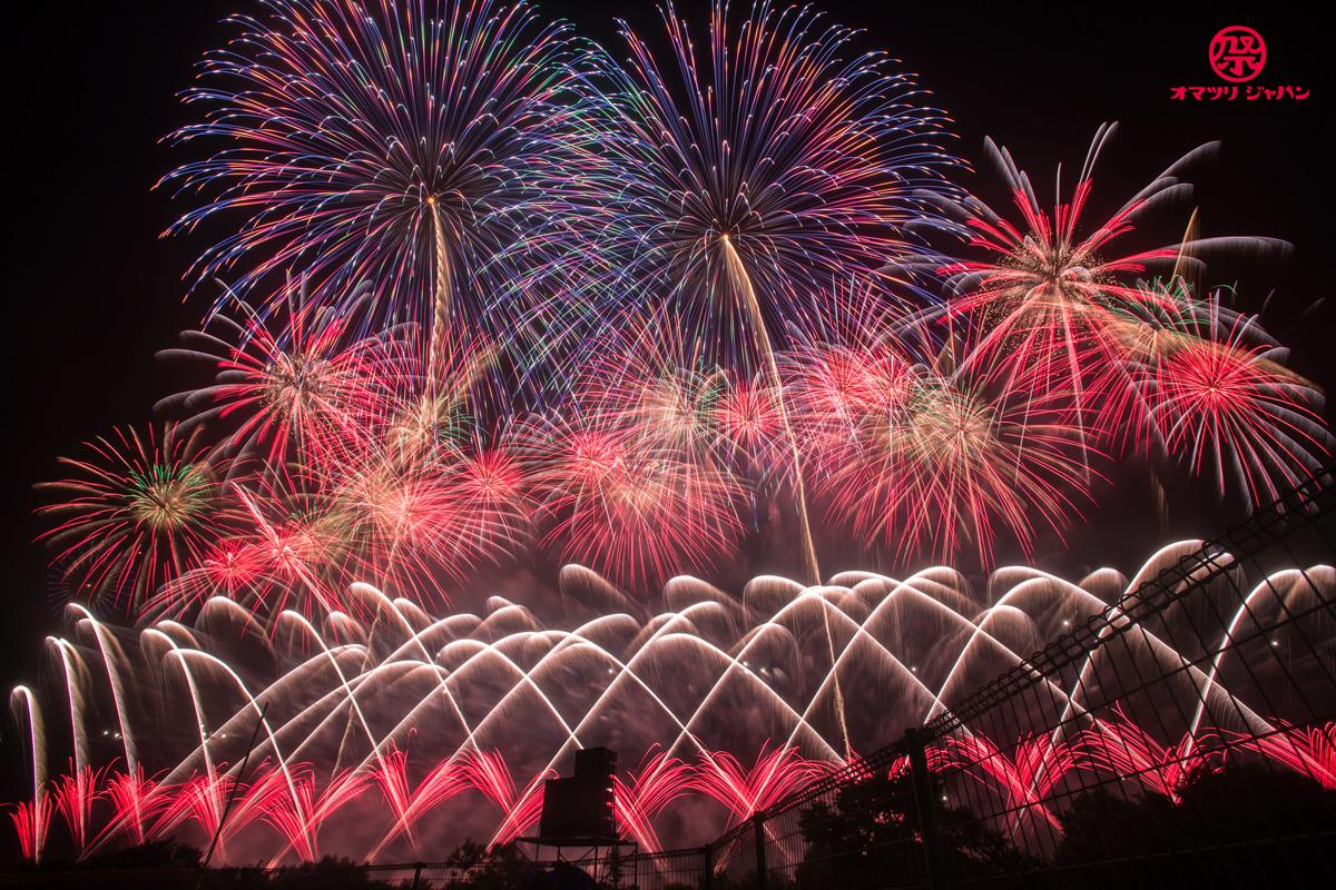 赤川花火大会は、なぜ感動日本一と呼ばれるのか?完全レポート!