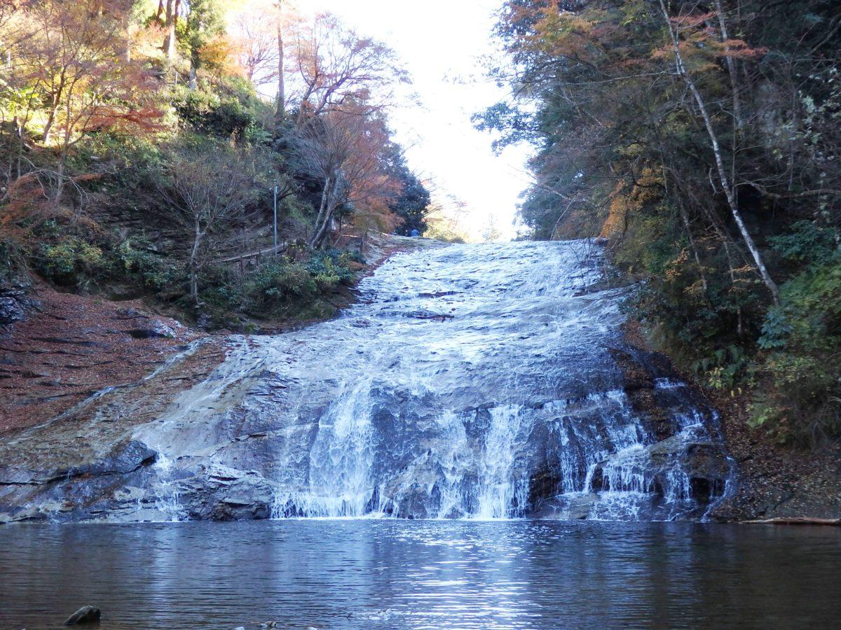 「養老渓谷もみじまつり」で、関東地方から過行く秋を惜しむ