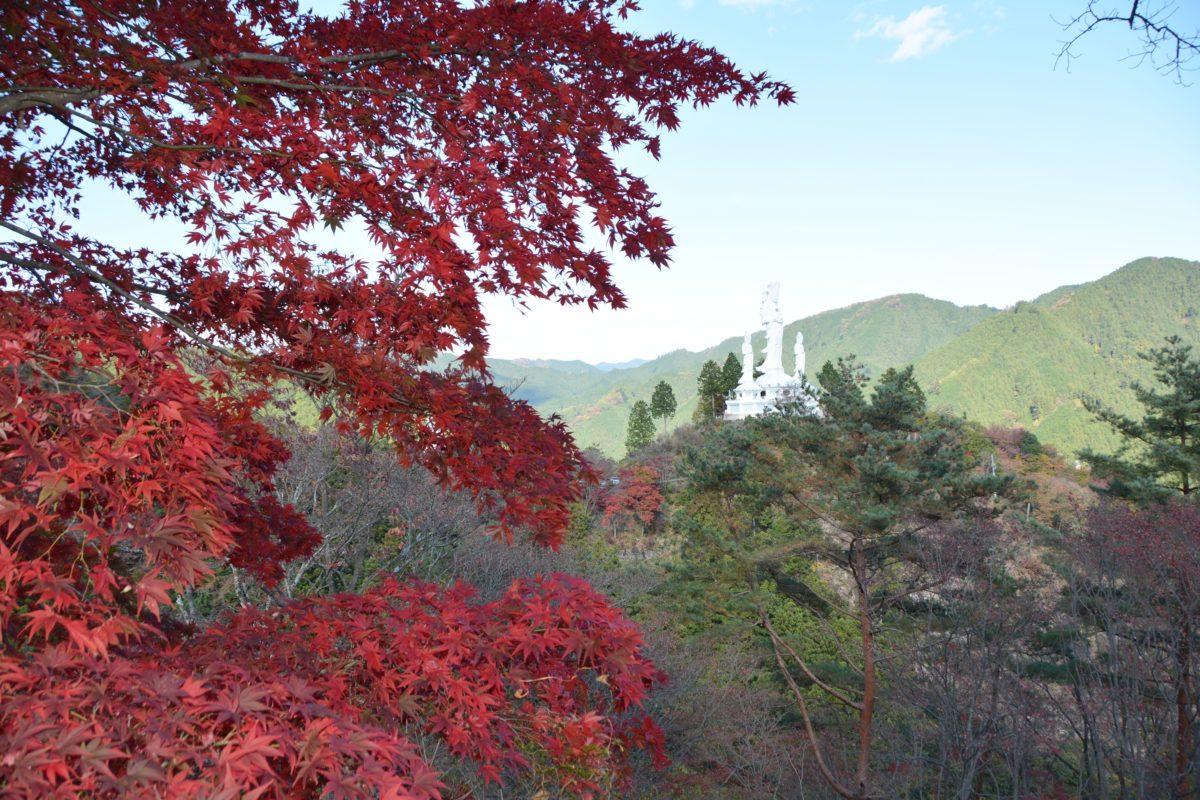 「なぐり紅葉まつり」、白雲山鳥居観音の山肌を縫う遊歩道をハイキングしながら紅葉狩り