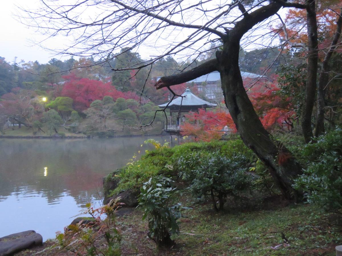 「成田山公園紅葉まつり」、庭園中央の3つの池を彩る紅葉を鑑賞した後に味わう成田名物のうなぎ
