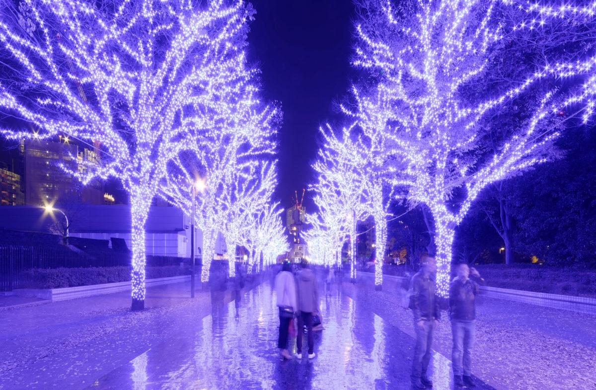 フォトコンテストのある冬のお祭り7選!冬の美しい風景を撮ろう!