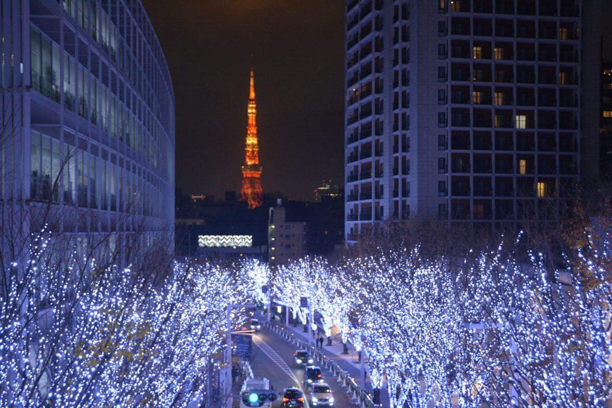 「六本木ヒルズクリスマス」都会的で洗練された煌めきで包まれる毛利庭園やけやき坂