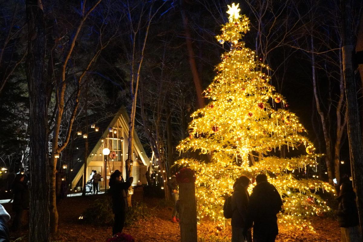 軽井沢高原教会「星降る森のクリスマス」は日帰りで楽しめる♪帰りに温泉も!