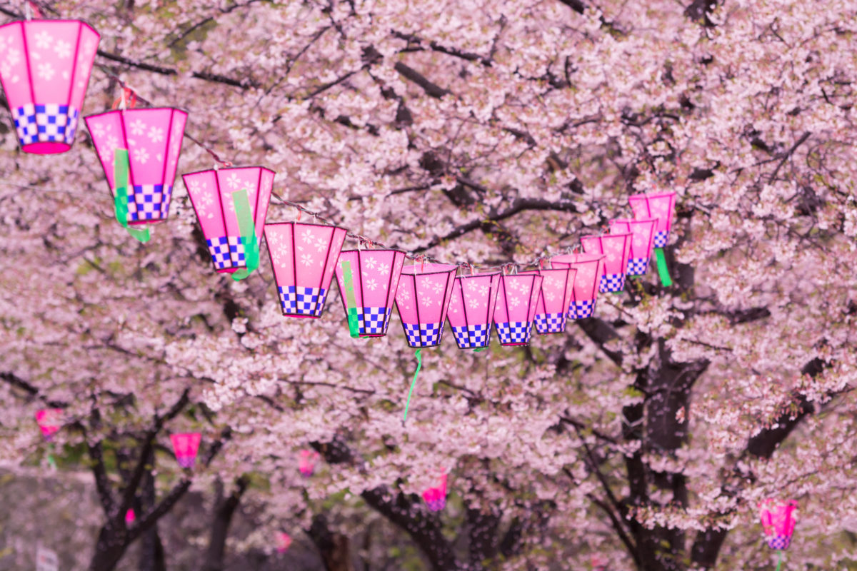 <商品PRにお祭り・お花見を活用!>「桜まつり」で商品をPRしませんか?