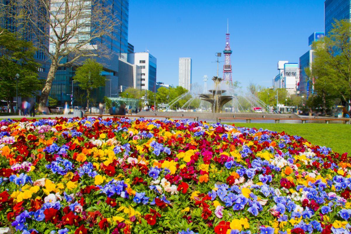 北海道で満開の花々を楽しむならココ!フラワーフェスティバル厳選5選