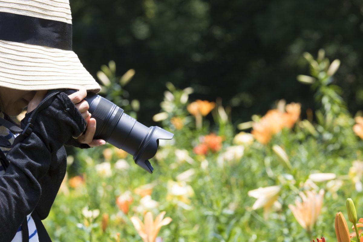 SNS映え間違いなし!花の写真の撮り方やコツを伝授します