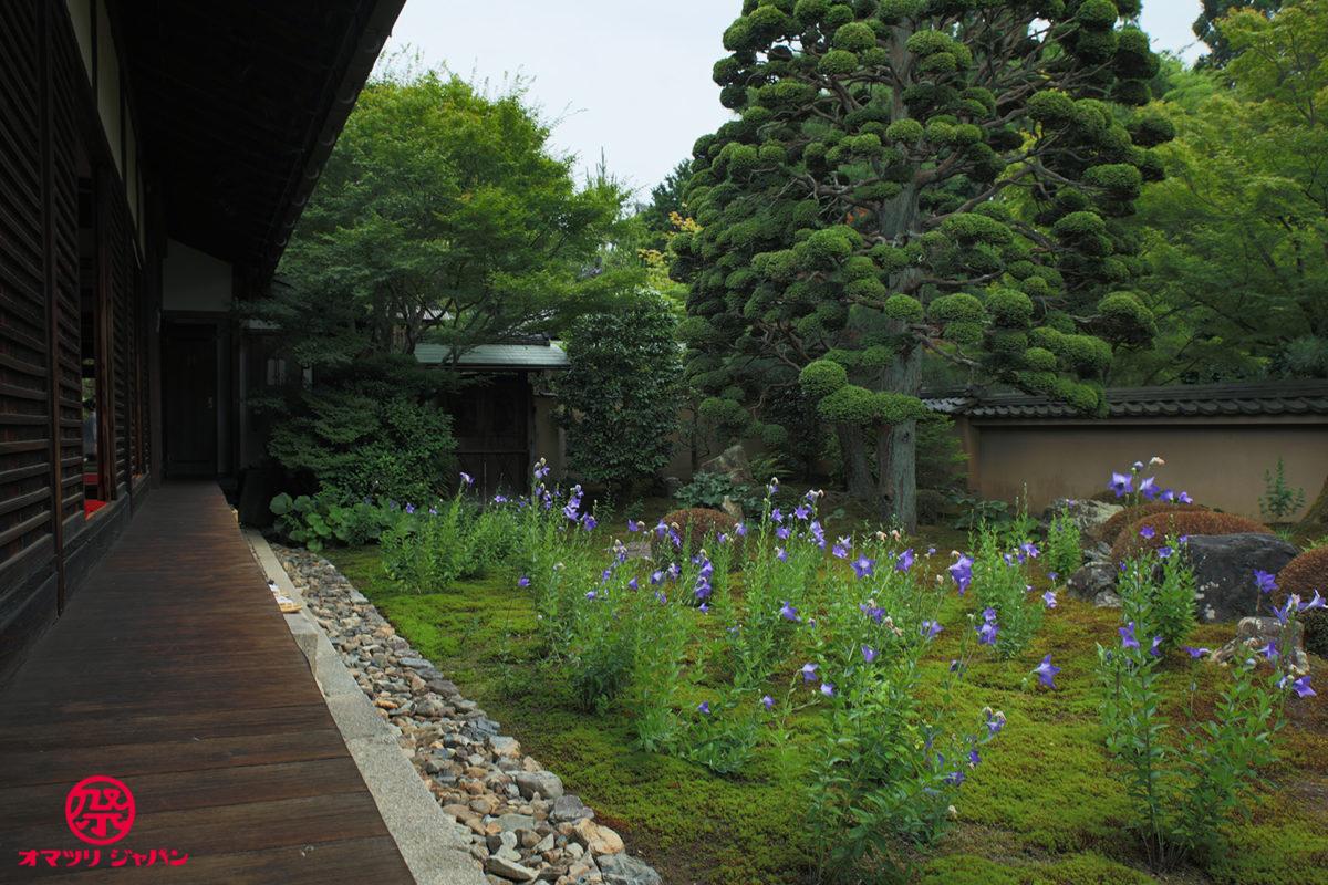 桔梗の寺「天得院」初夏の特別拝観