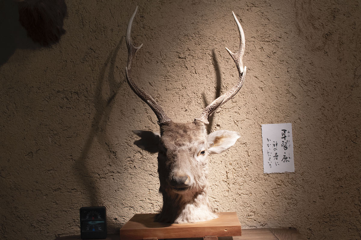 鹿の頭を生贄に!?長野・諏訪の御頭祭について知るために神長官守矢史料館へ