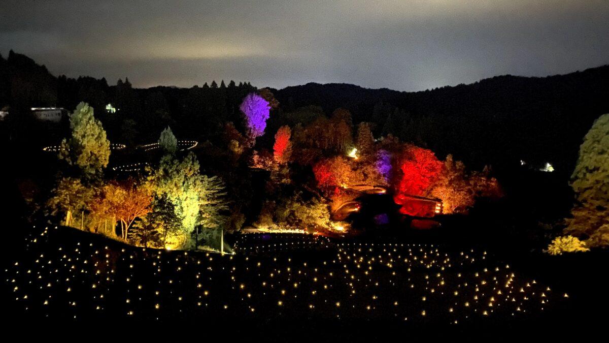 【山古志 棚田・棚池あかり】幻想的なライトアップの映える撮り方とは?