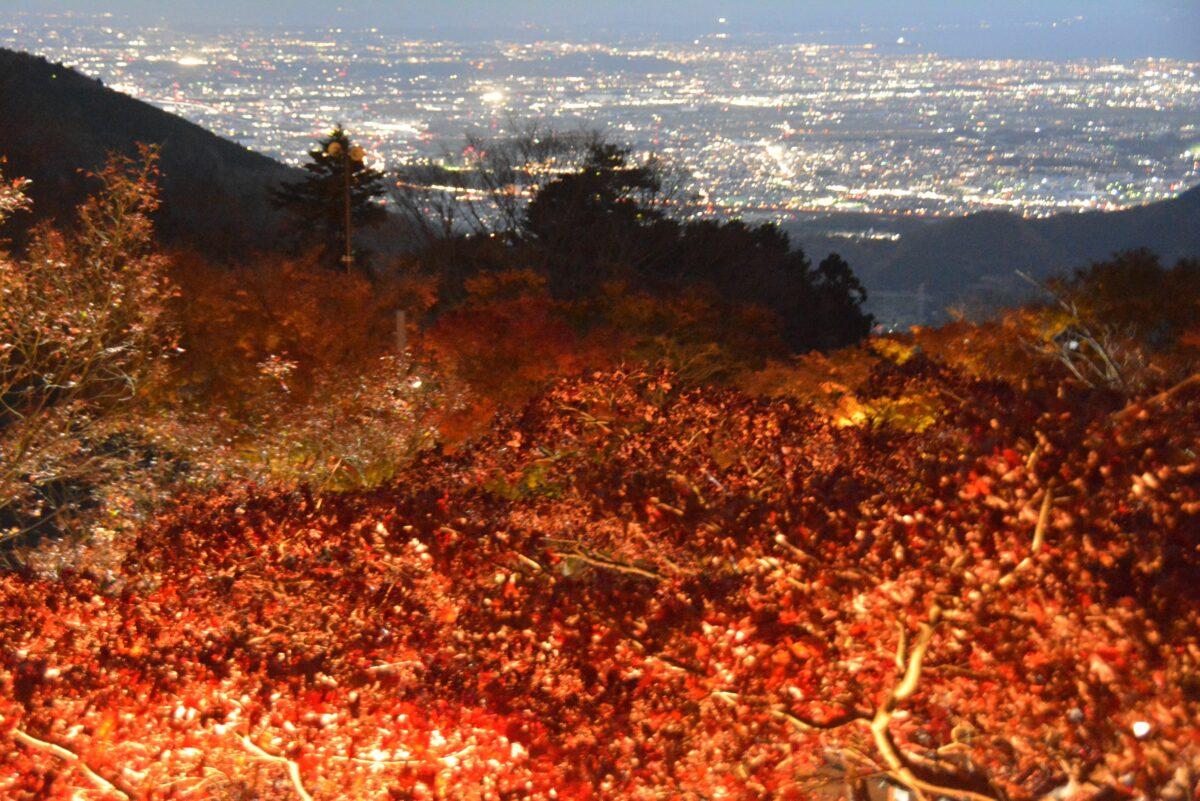 【秋の大山・夜景と紅葉】昼夜で別次元の世界が広がる大山寺や阿夫利神社