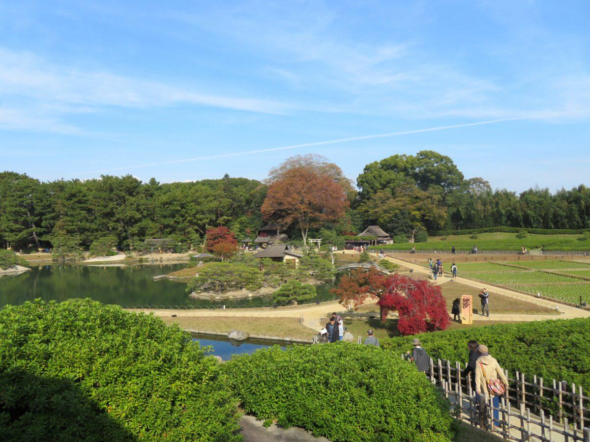 【後楽園の紅葉】岡山城下で旭川沿いが季節の彩りに包まれる日本三名園