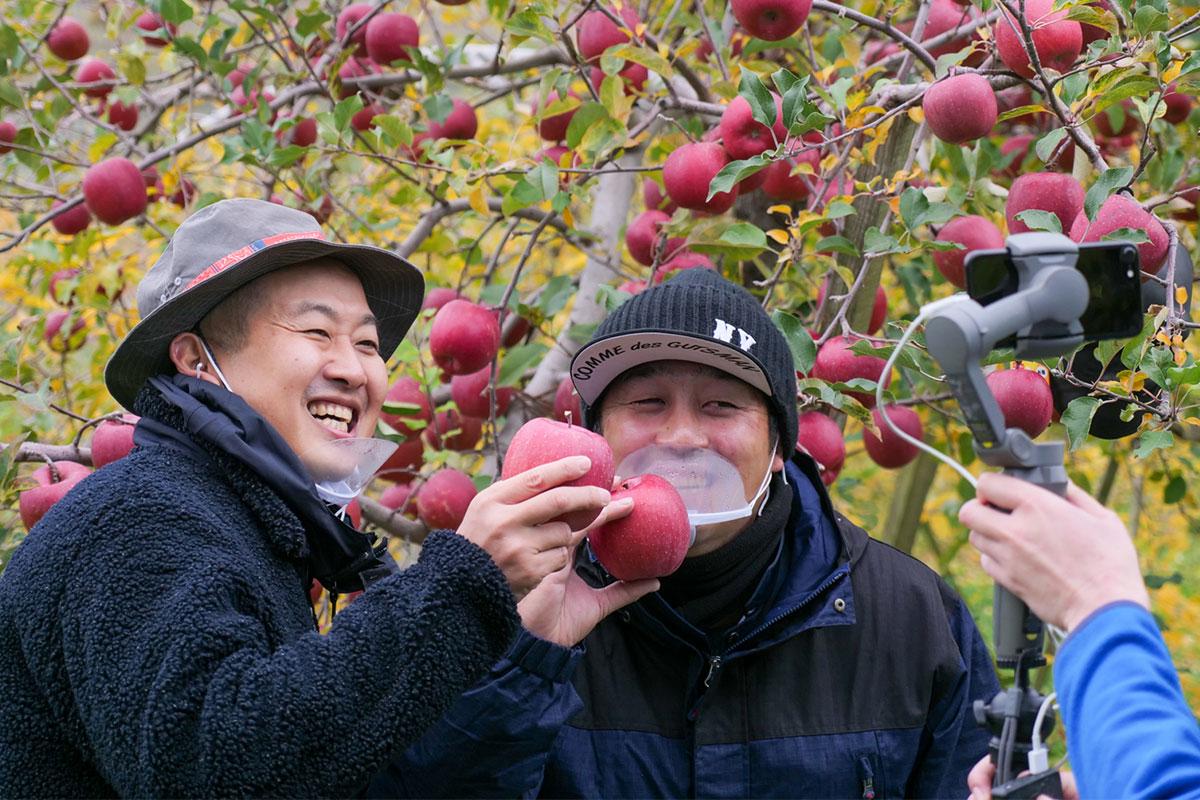 最高級りんごと農家さんを独り占め!おうちで体験するオンライン収穫ツアー(青森県平川市)