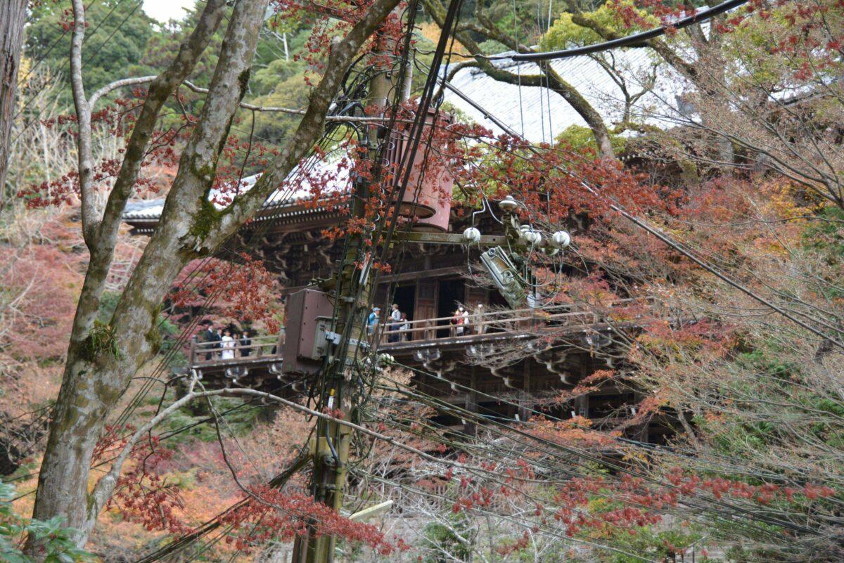 【書写山・秋の探訪】弁慶が修行を積んだと伝わる姫路市の圓教寺を彩る紅葉