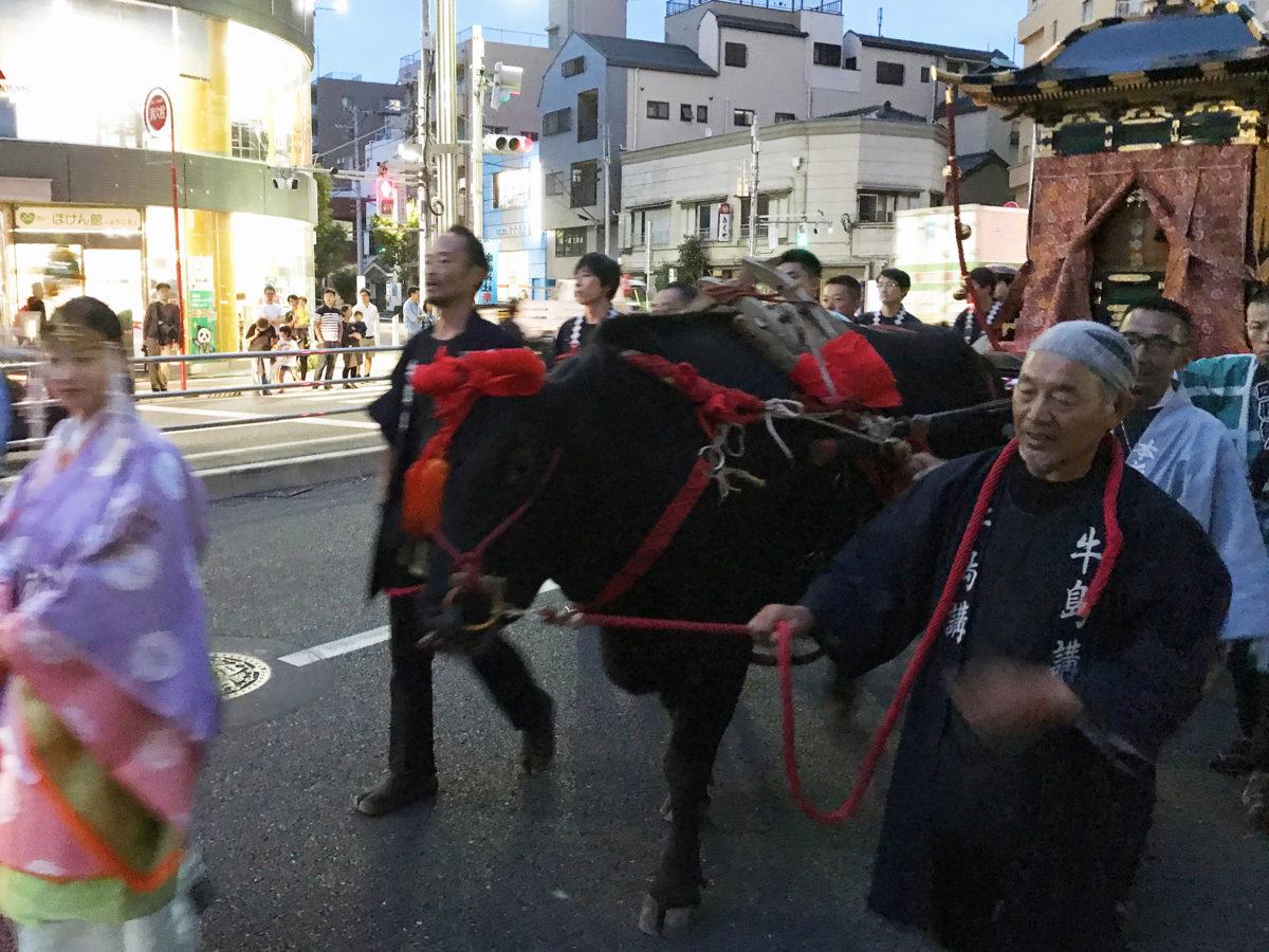 「牛嶋神社祭礼」歴史に深き牛に囲まれた神社|観光経済新聞