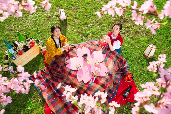 こたつで温まりながら花見酒を楽しめる「花見こたつ」青森屋にて4月20日から開催
