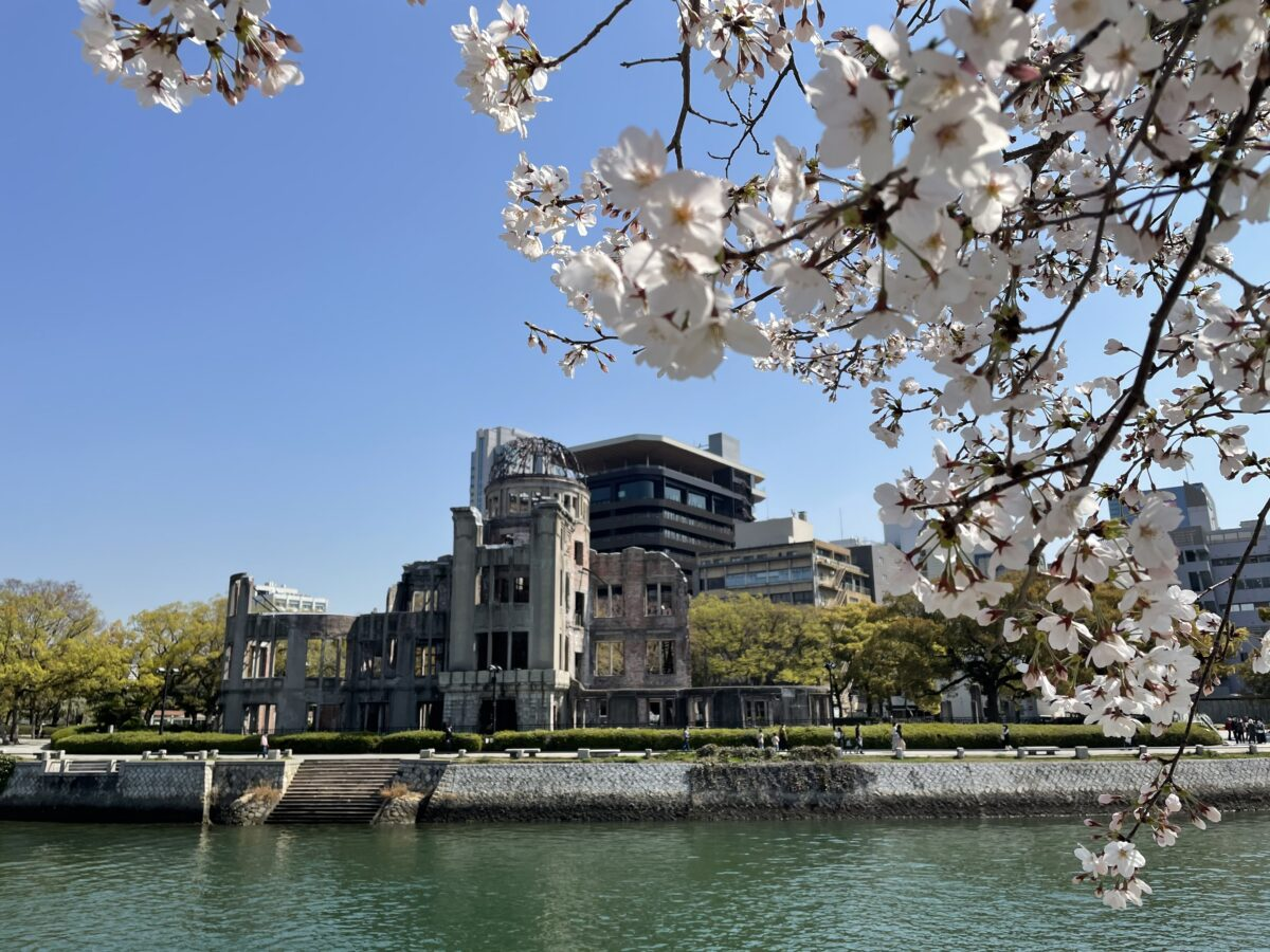 【平和記念公園】世界平和への願いを込めた満開の桜!広島から現地レポート