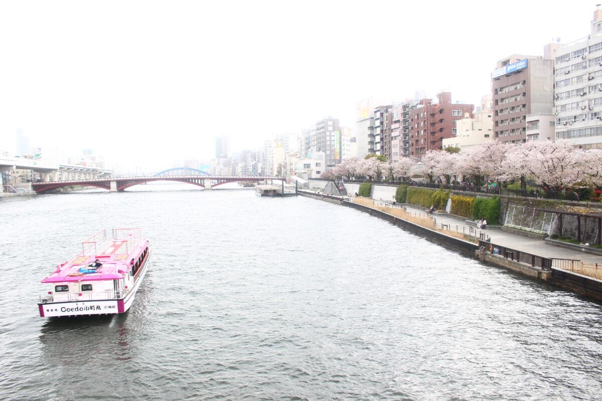 隅田公園は隅田川両岸に広がる桜の名所!オープンしたての話題の新施設も登場!?