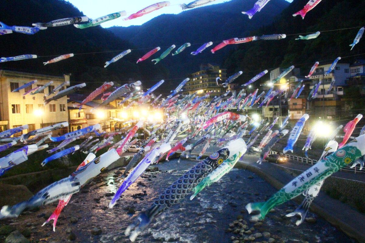 杖立温泉鯉のぼり祭り2021!川上へ雄大に泳ぐ鯉。夜間ライトアップで艶やかに