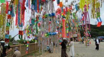 筑波山頂七夕まつりの開催期間に御幸ヶ原で風に靡く約10本の竹笹