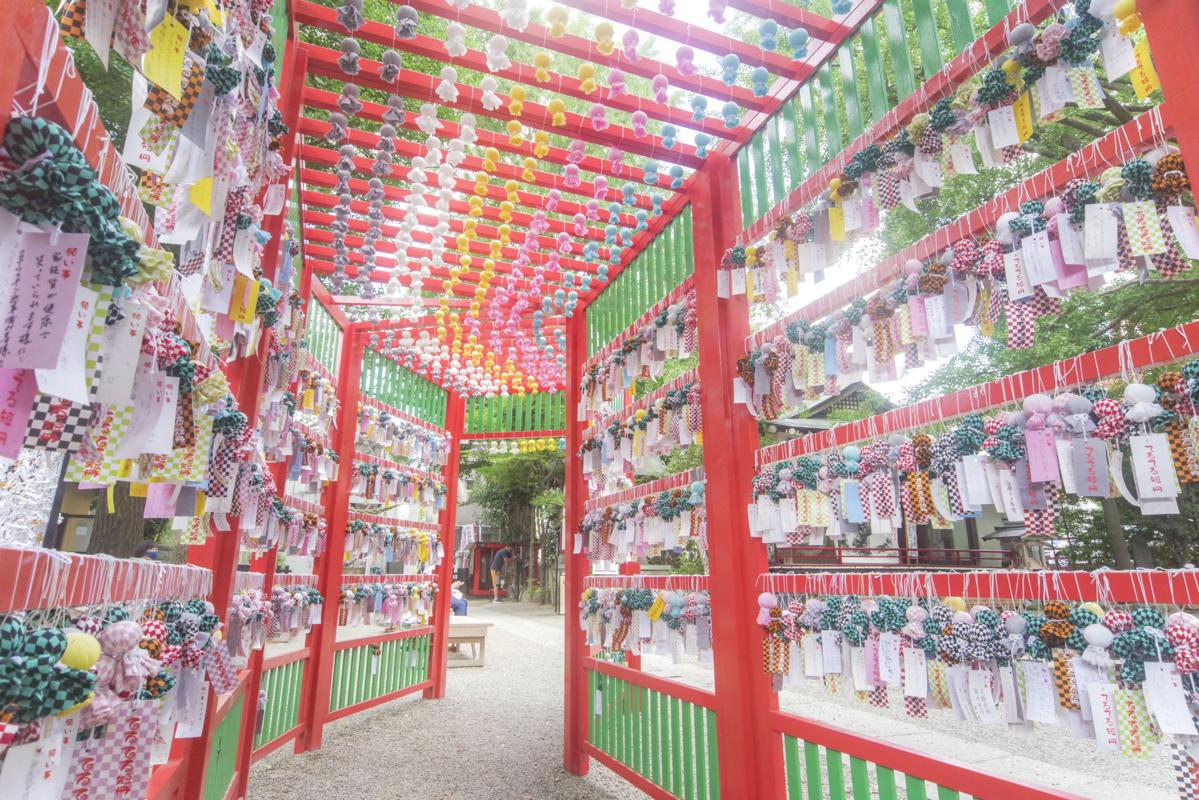 色とりどりのてるてる坊主がトンネルに! 田無神社の「七夕てるてるトンネル」