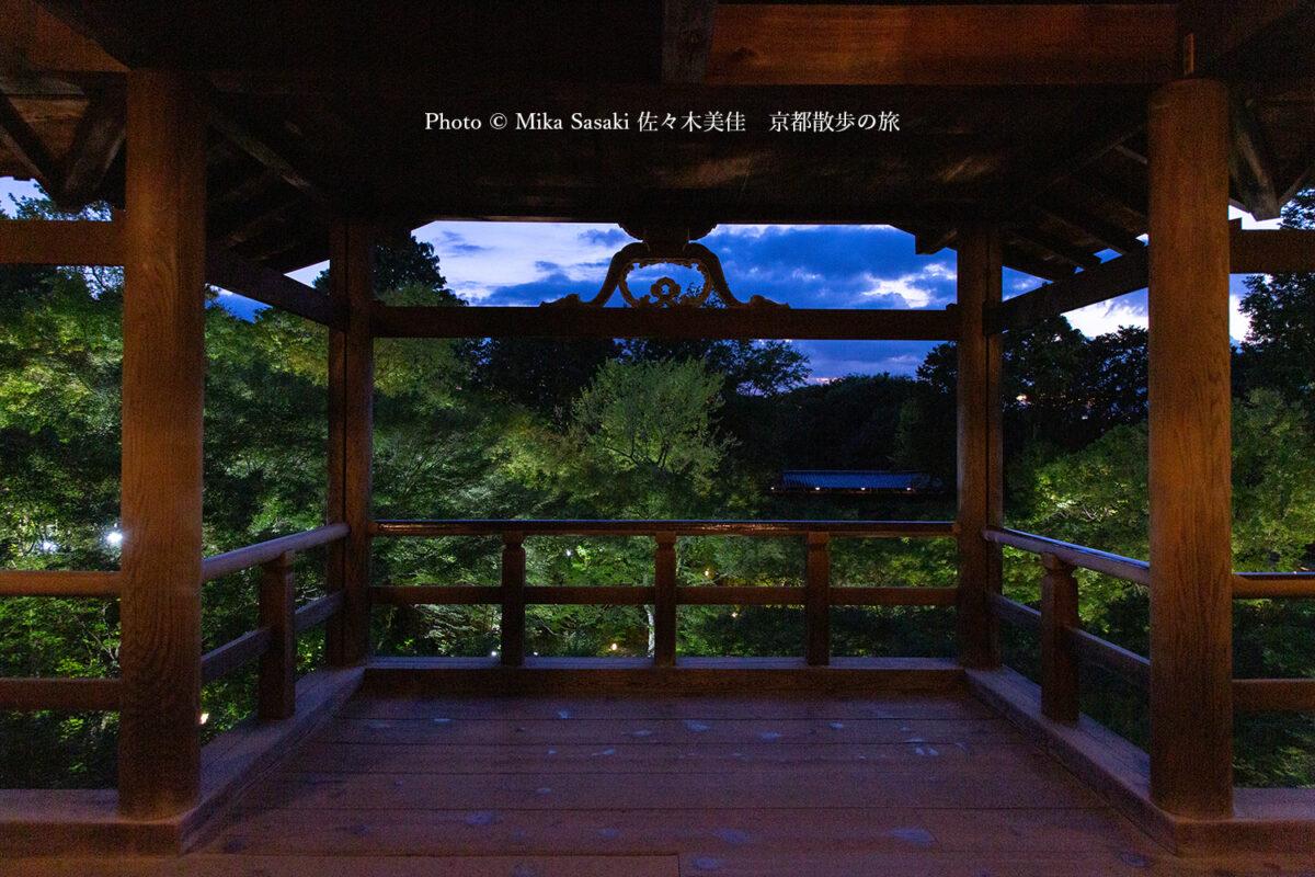 史上初!「東福寺」青もみじライトアップ特別散策と四季の写真を比べてみた