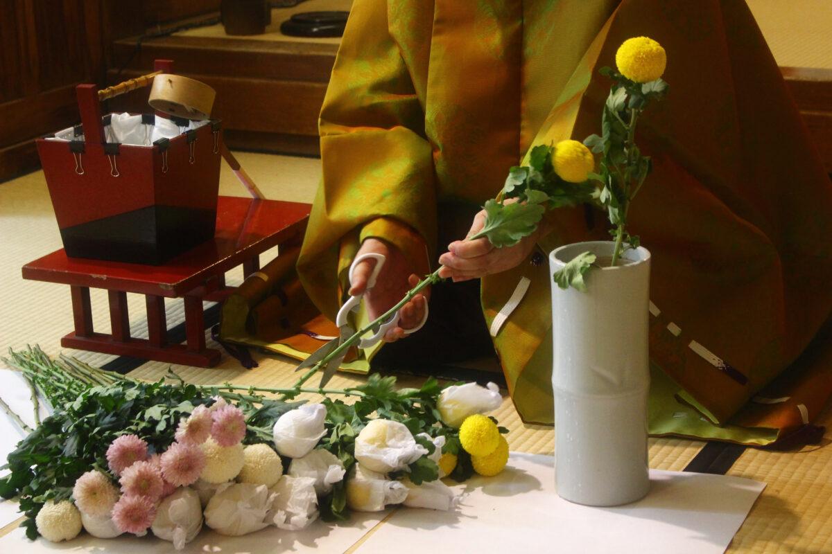 重陽祭を速報レポ!大阪、少彦名神社の秋の祭り。菊の御朱印、お守りが登場