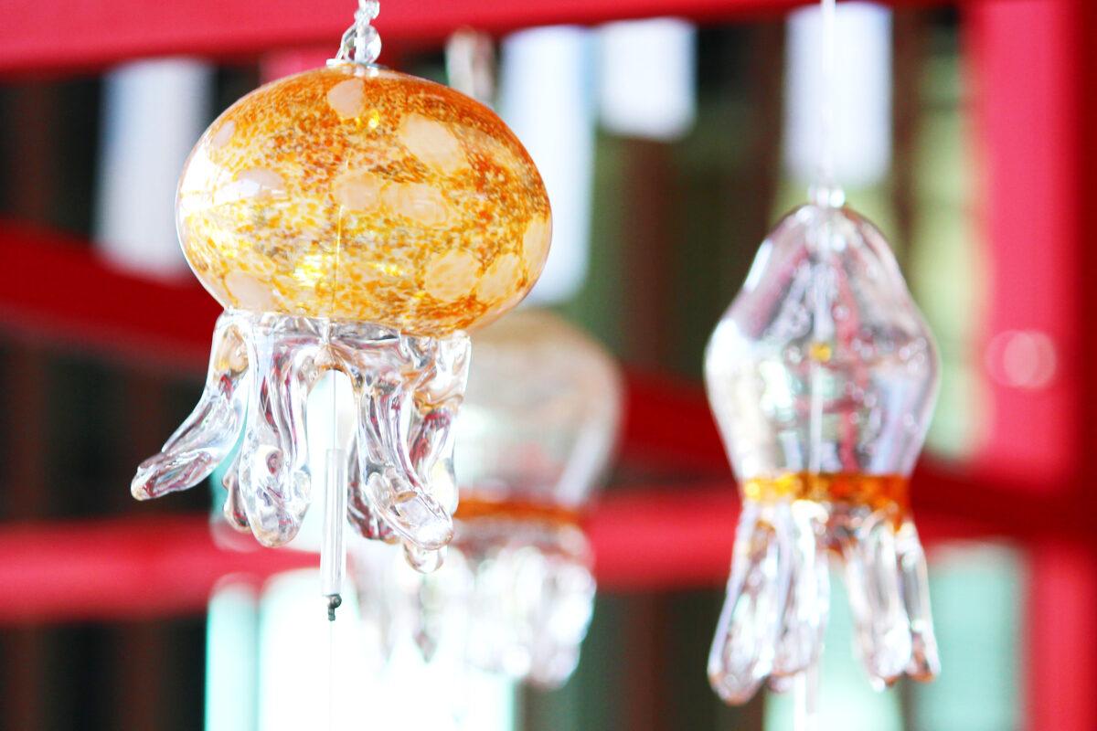 くらげと風鈴が京都水族館で開催中!飼育員さんの熱意が風鈴になった!?