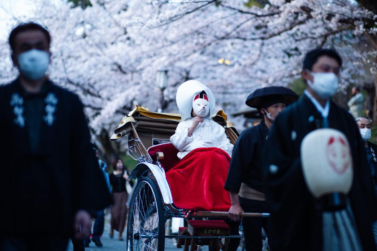 「東山花灯路 狐の嫁入り」見るのも参加も縁起が良い|観光経済新聞
